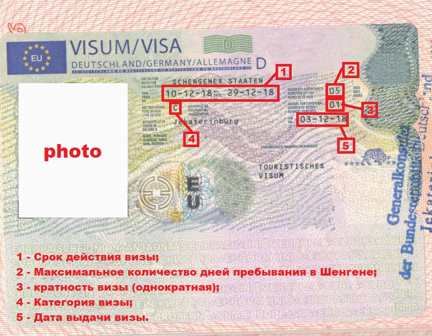 она неё фотография на немецкую визу даже намекнул, что